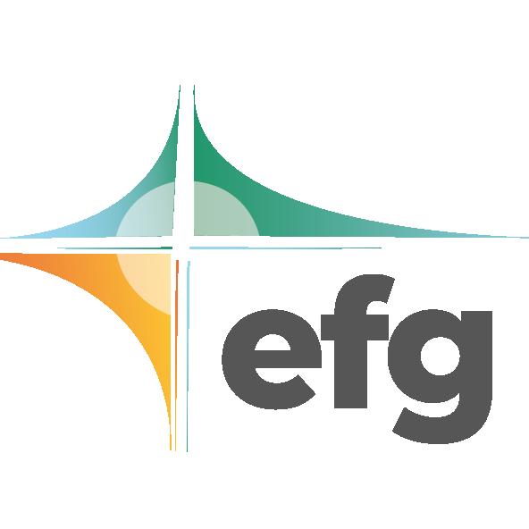 EFG Hassfurt Icon in grau